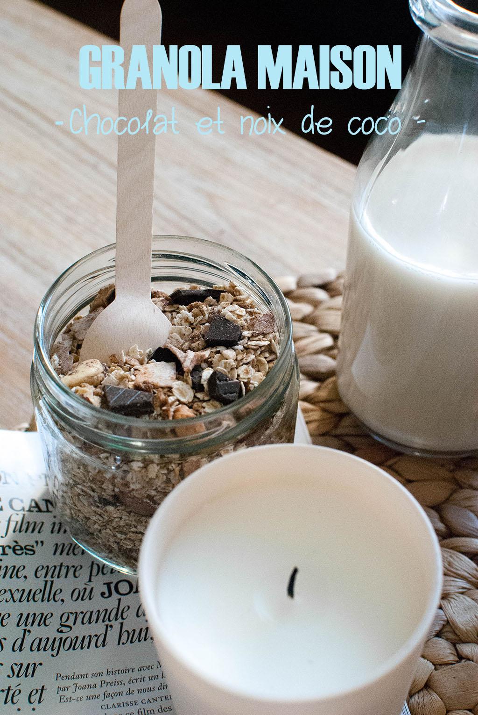 granola maison chocolat noix de coco food recette healthy petit déjeuner breakfast le petit monde d'elodie