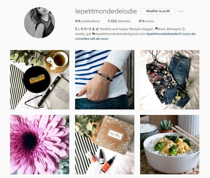 compte instagram le petit monde d'elodie
