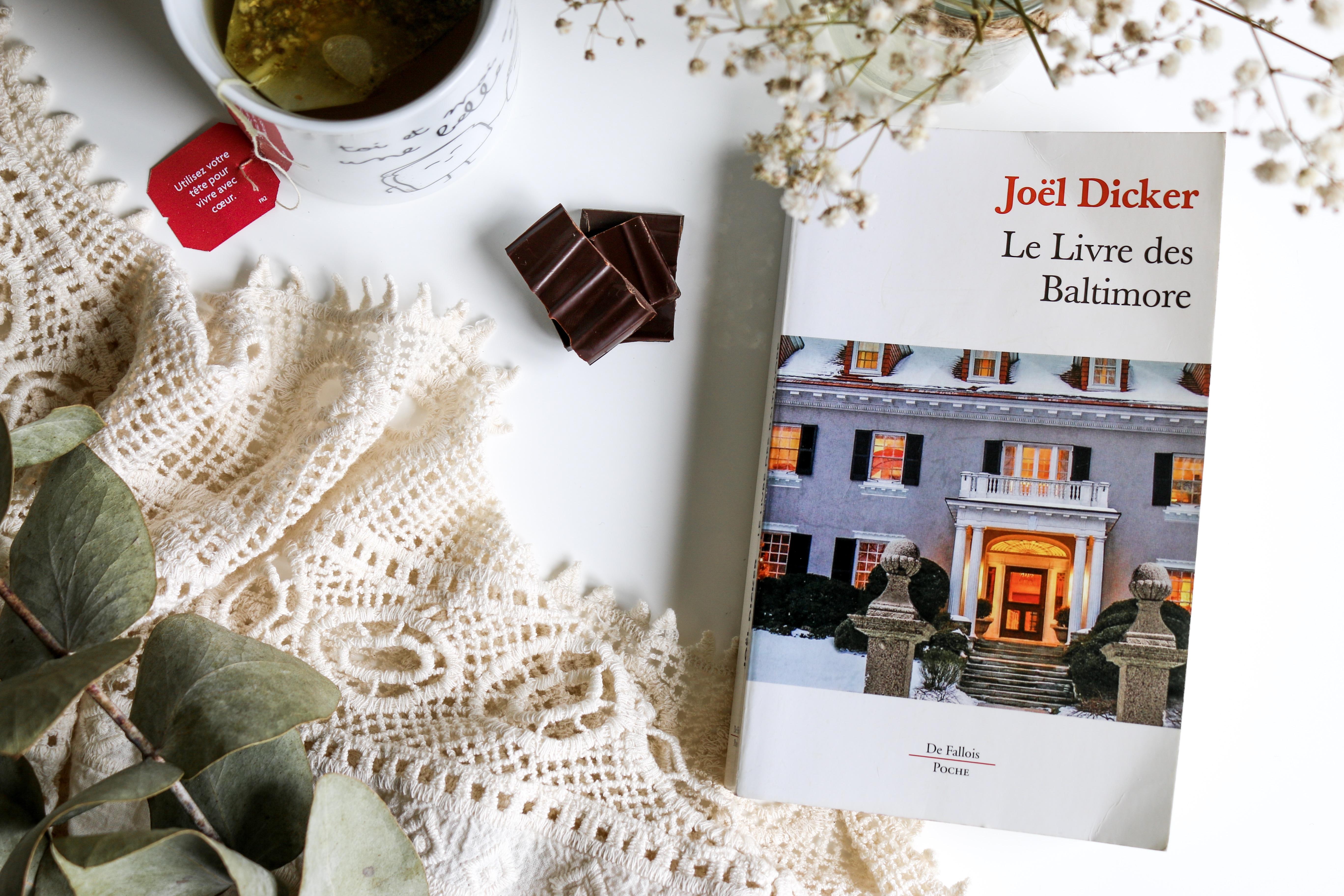 le livre des baltimore joel dicker lecture le petit monde d'elodie