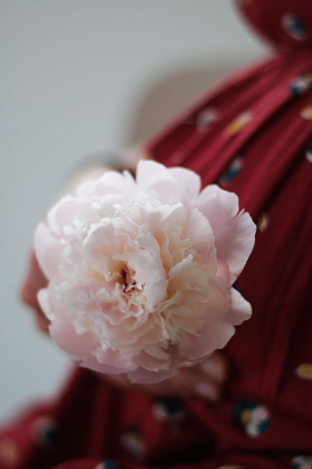 grossesse et fleurs par lepetitmondedelodie