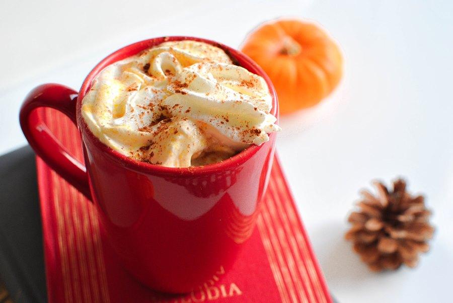 pumpkin chai latte boissons chaudes food recettes le petit monde d'elodie potimarron