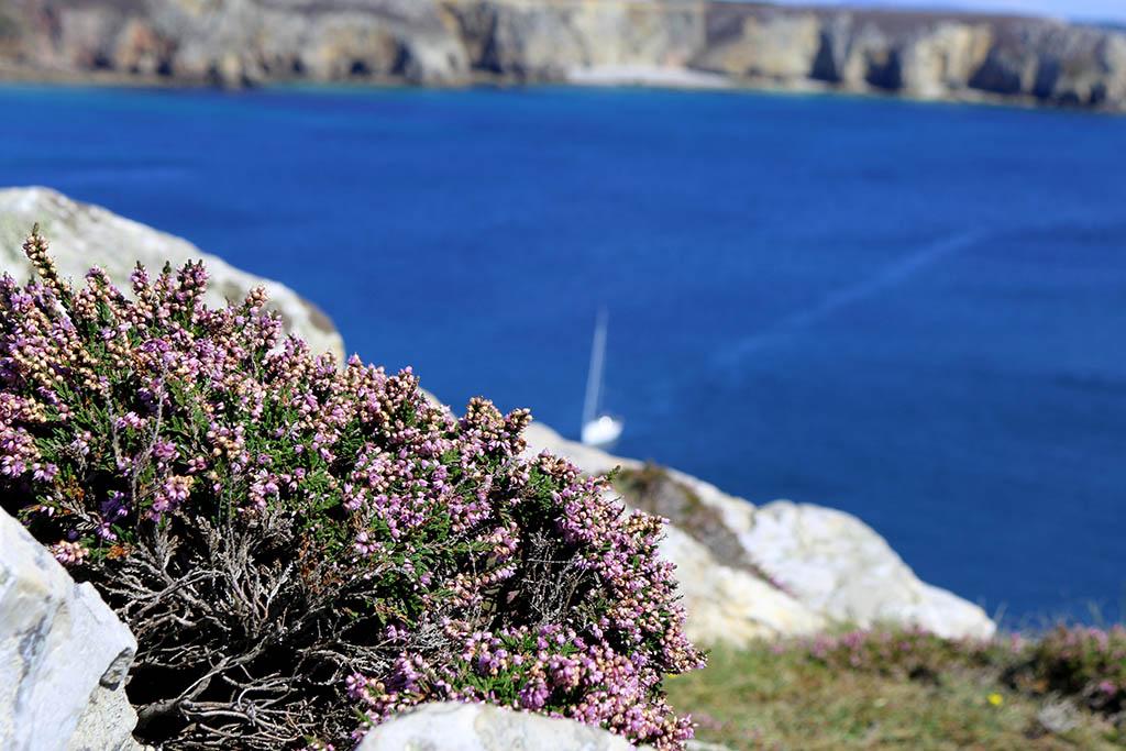 Promenade à Camaret-sur-Mer dans le Finistère en Bretagne