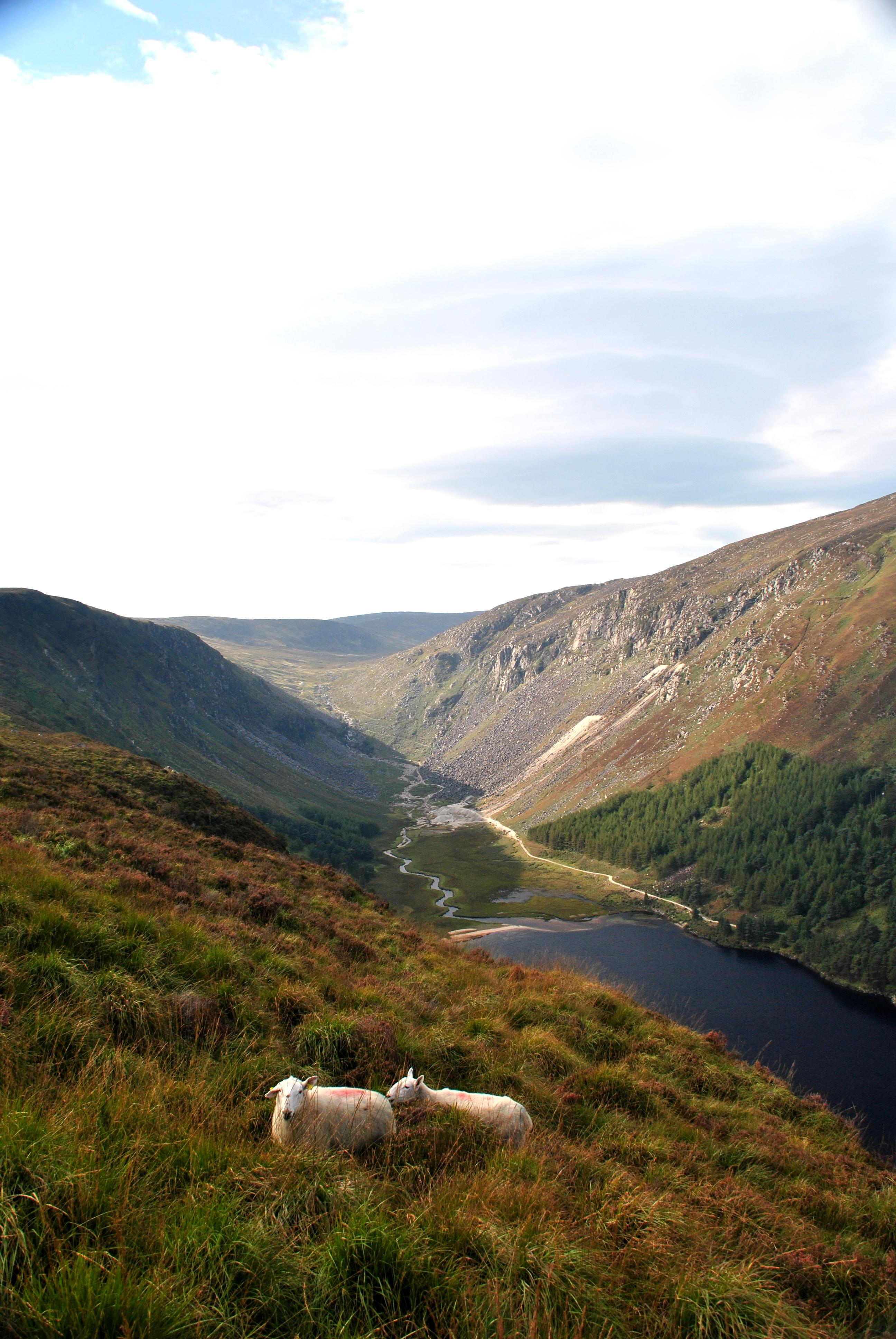 travel wishlist irlande le petit monde d'elodie